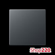Клавиша 1-кл., антрацит матт, Jung A500 A590BFANM